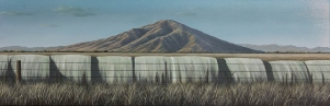 Halden Arm, near Lake Benmore Oil on canvas $1,800