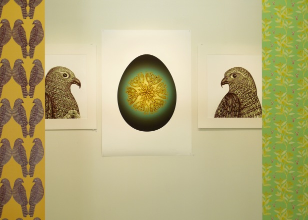 2. Falcon Pair with Egg